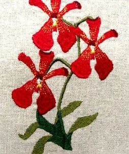 Scarlet Orchid embroidery design