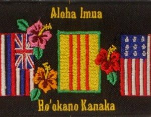 Hawaii State Flag, Viet Nam Flag,  American Flag embroidery patch