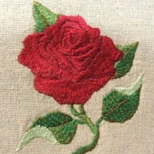 Amazing red rose embroidery design