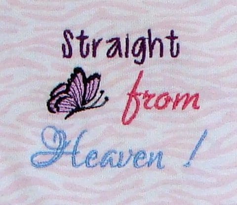Straight from heaven butterfly Machine Embroidery