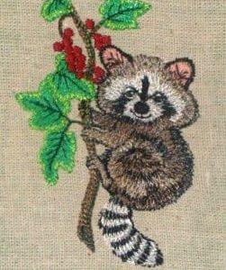 baby racoon clinging to a small branch Machine Embroidery